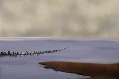 136 Vadehavet XI