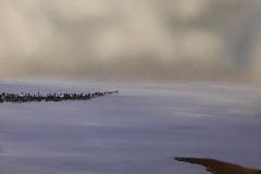 137 Vadehavet XII